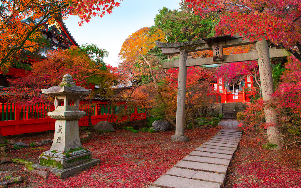 Japánkertek jellegzetességei
